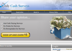 Only Cash Surveys
