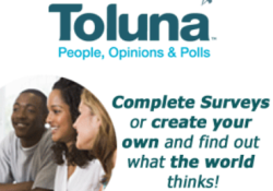 toluna surveys reviews