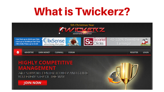 What is Twickerz about