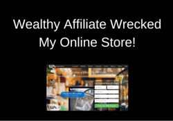 My Wealthy Affiliate Experience Wrecked My Online Store