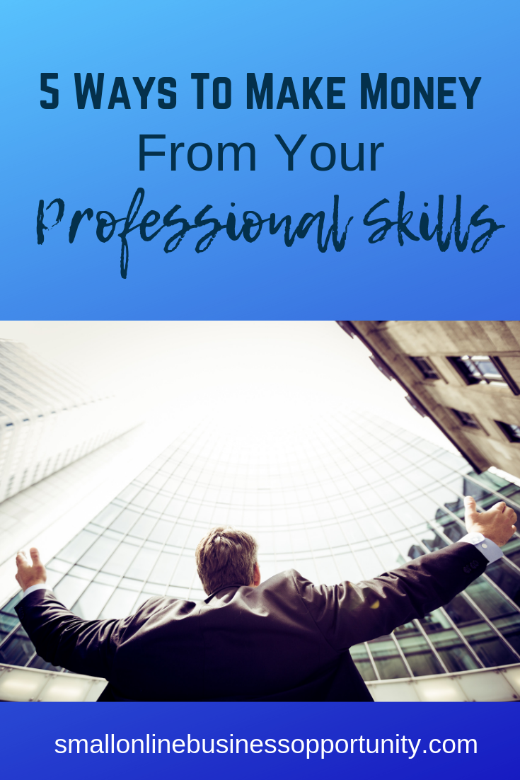 5 Ways To Make Money From Your Professional Skills